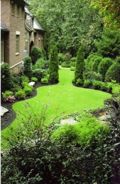 Arborvitae Landscaping Ideas for Back Yard