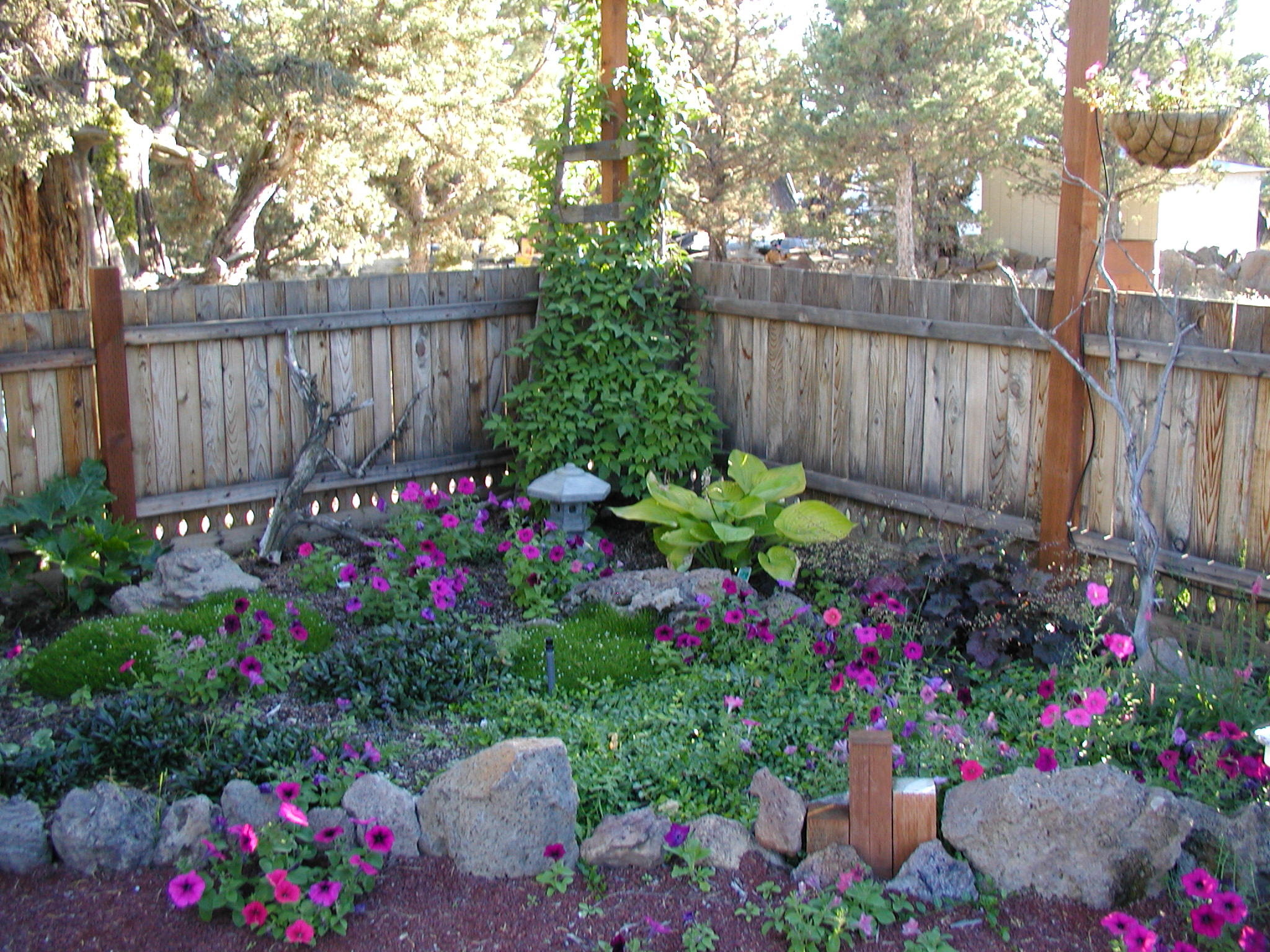Shade Garden Design Ideas Homsgarden