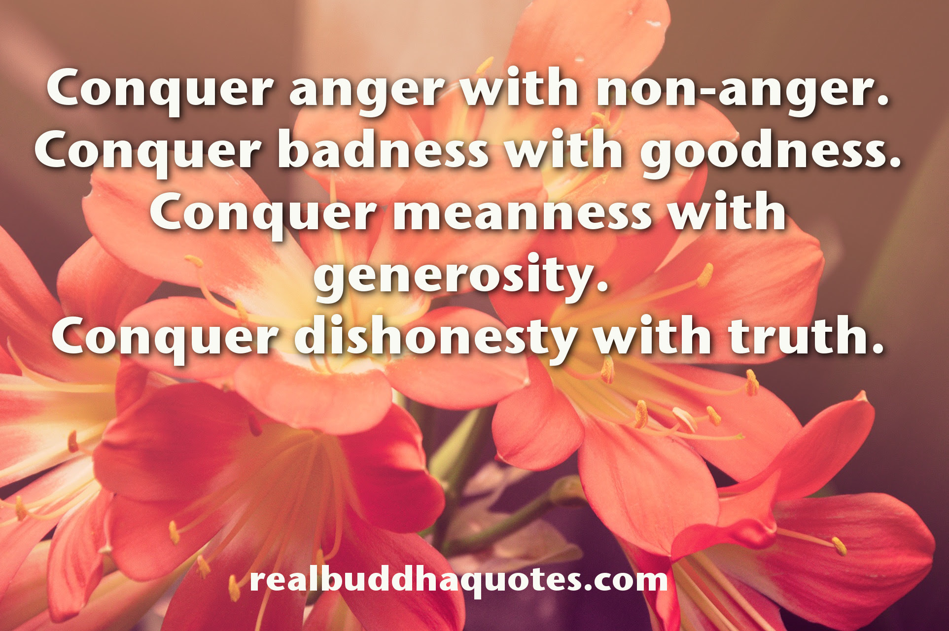 Anger Real Buddha Quotes