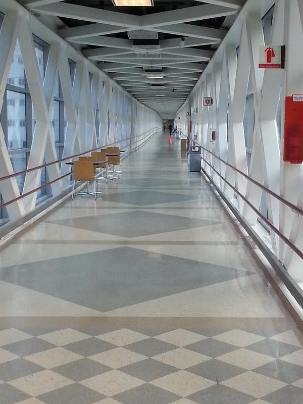 OHSU Suspension Bridge