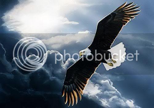 Free Eagle