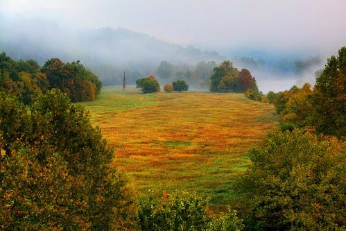 Meadows in Fall