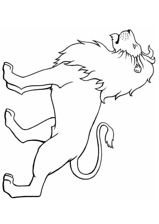 Dibujo Para Colorear León Img 8904