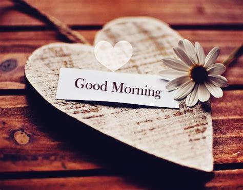 good morning status  whatsapp good morning whatsapp