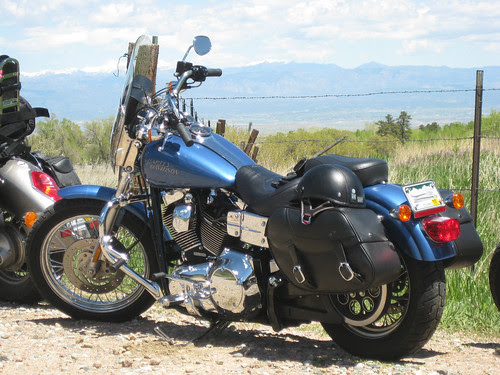 My Harley Davidson 2005 Dyna Low Rider