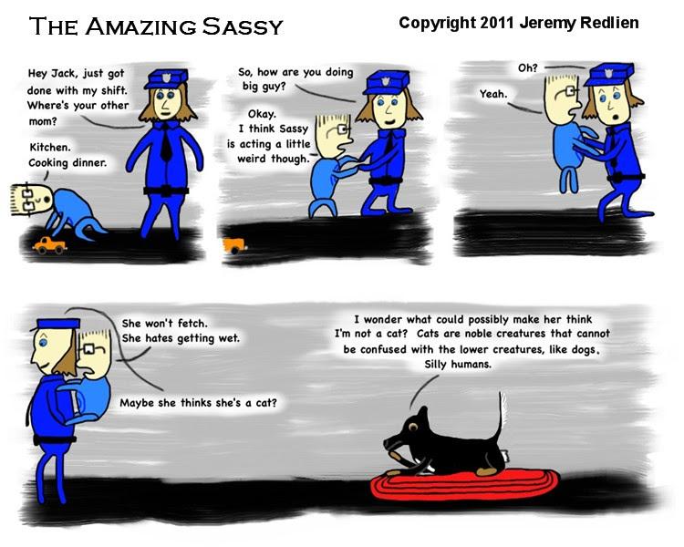 The Amazing Sassy - Sassy the cat