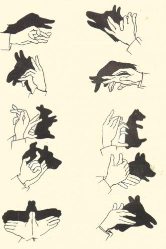 ombre cinesi,come fare le ombre cinesi,le ombre cinesi con le mani,