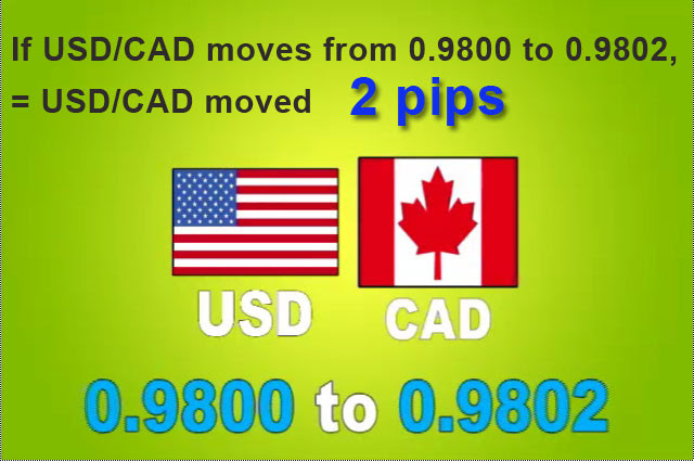 usd cad pips1 What is a Pip?