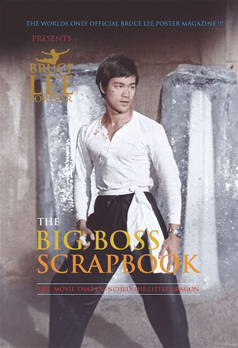 BLACK FRIDAY SALE:Bruce Lee Forever presents ?THE BIG BOSS