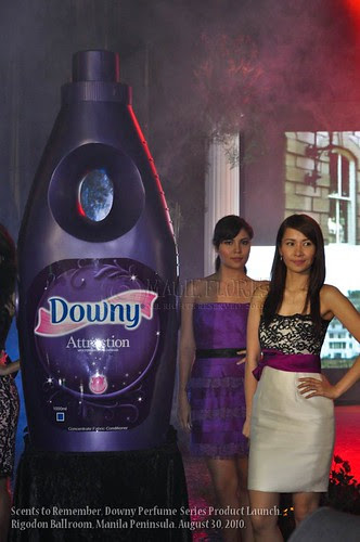 2010-08-30 Downy Scents LR-9
