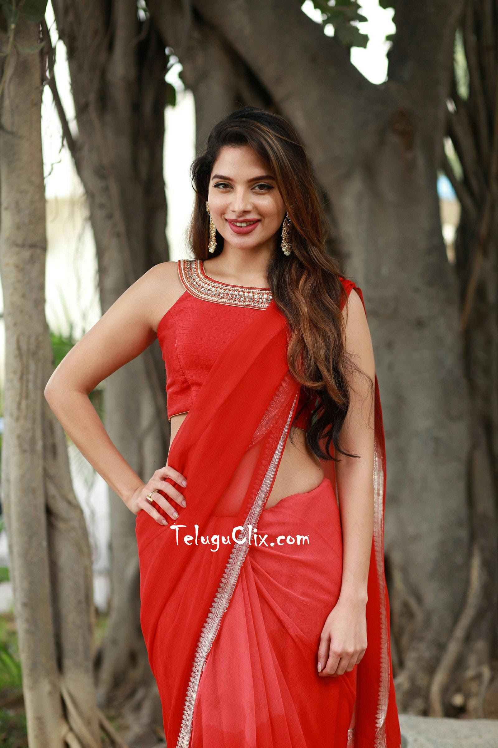 Tanya Hope In Saree Hd Photos Red Latest New Hq Stills Hot Pics