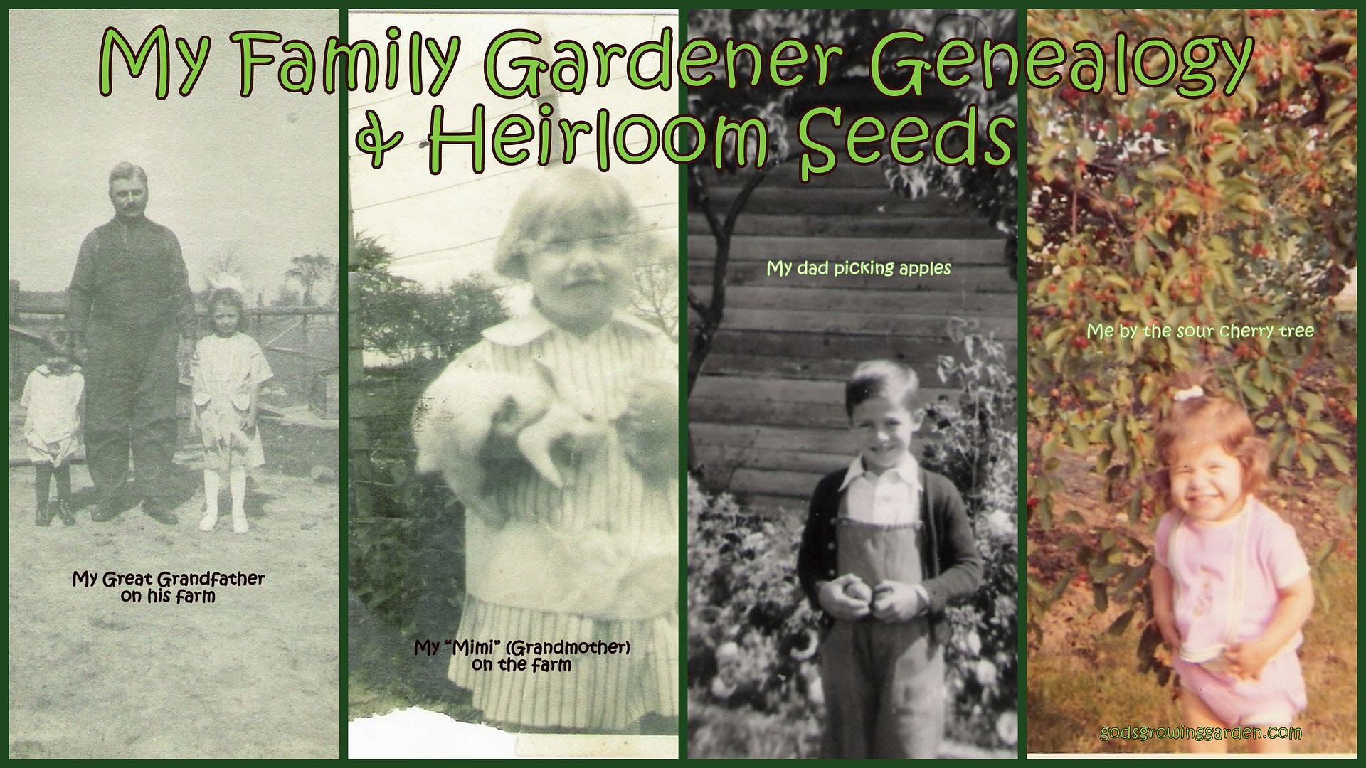 Gardener Genealogy by Angie OuelletteTower for godsgrowinggarden.com photo OldPhotosMe_zps6e392fc0.jpg