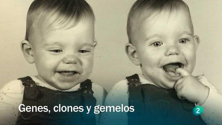 Redes - Genes, clones y gemelos