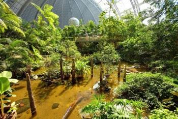 pantai-hutan-indoor