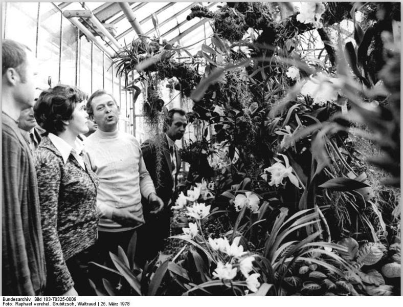 File:Bundesarchiv Bild 183-T0325-0009, Leipzig, Botanischer Garten.jpg