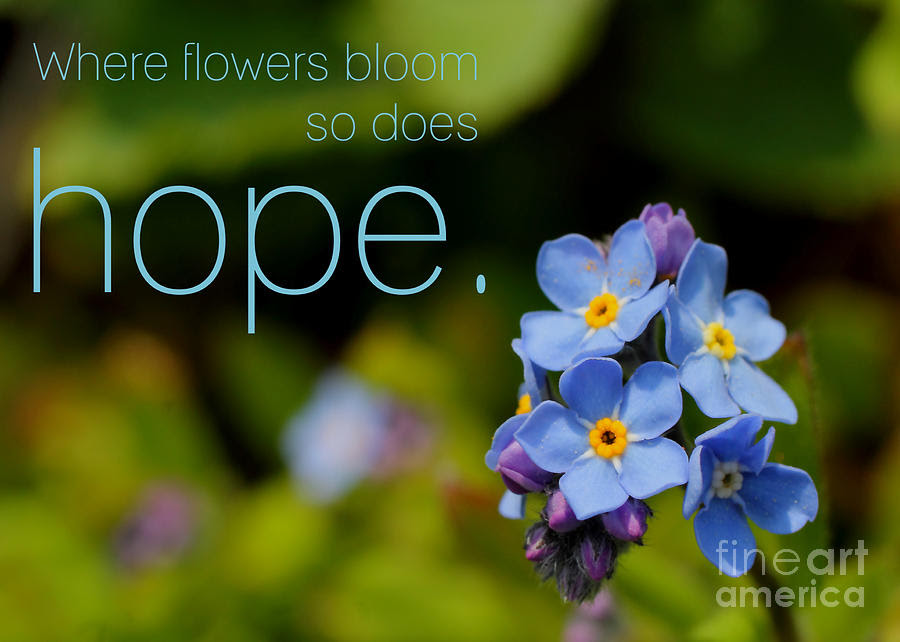 Full Text Of Hope For The Flowers