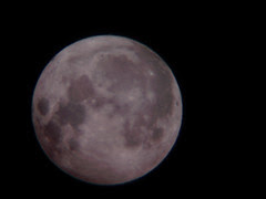 DSC03082 - full moon