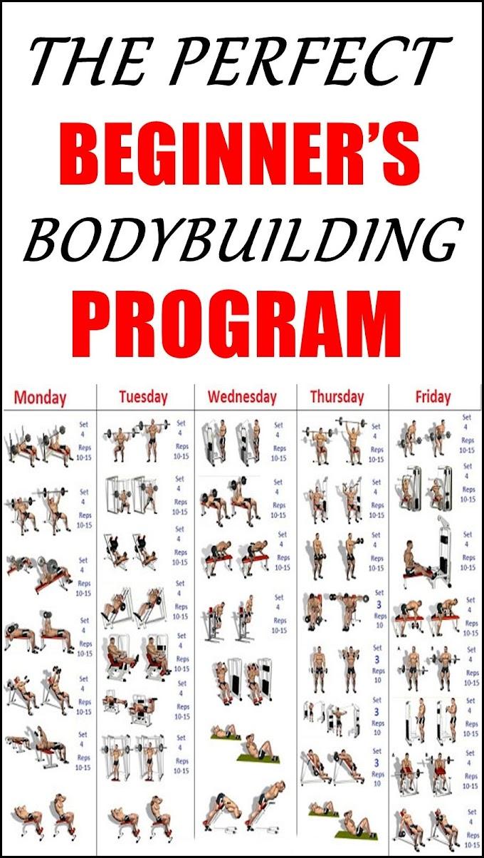 beginners bodybuilding program