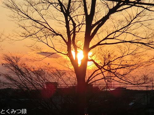 2011年3月17日 午後5時39分頃