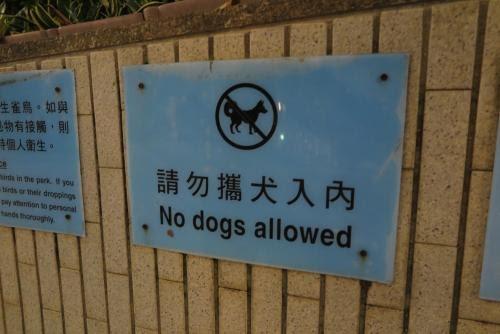 由區選中的動物政策談起(二)