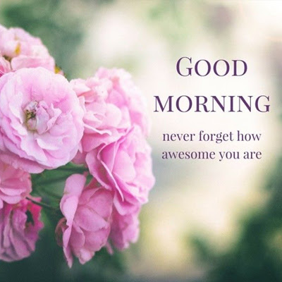 Never Forget How Awesome You Are Morning Wishes For Friends Good