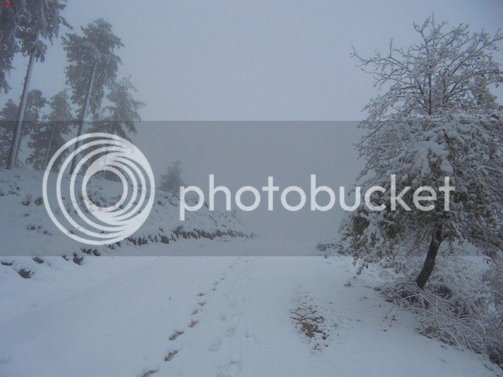 photo TANGORRI - IRULEGUI INVERNAL 22-11-15 012_zpshe8fjxba.jpg