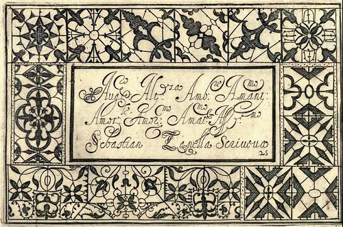 Bertozzi + Zanilla 1604 Lace Typography d