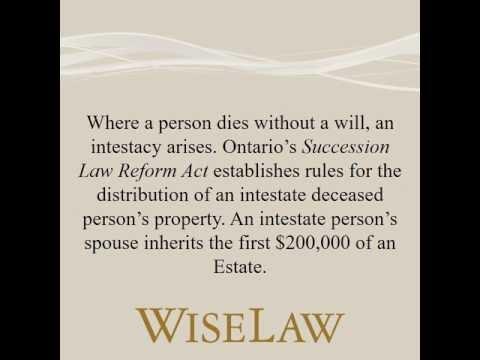 Image Result For Injury Litigation
