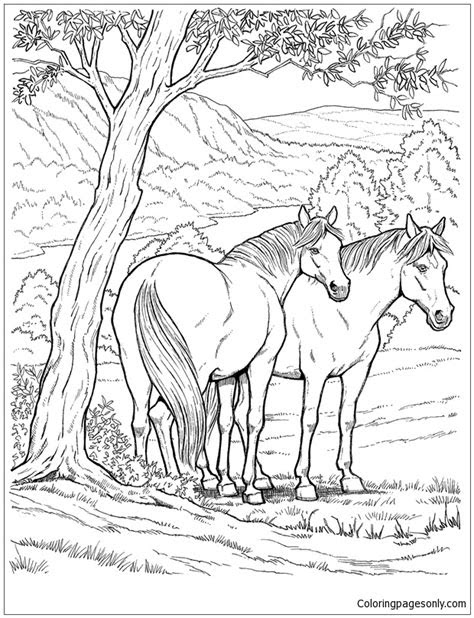 wild horse coloring page  coloring pages
