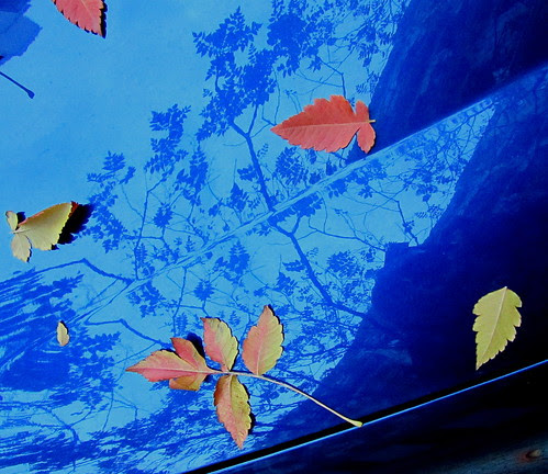 On the Car Blue by JoseAngelGarciaLanda