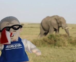 J.O. with an elephant