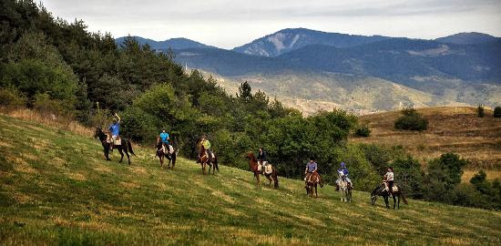 http://media-cdn.tripadvisor.com/media/photo-s/08/1c/de/93/horseriding-bulgaria.jpg