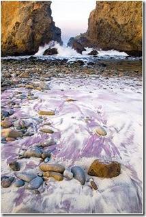 Praia Pfeiffer__A ação das ondas5