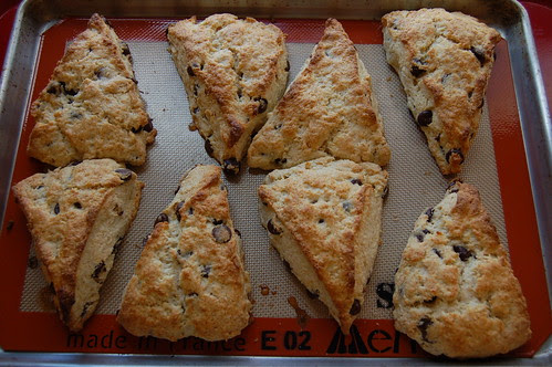Chocolate Chip Cream Scones With Orange Zest by Eve Fox, Garden of Eating blog, copyright 2011
