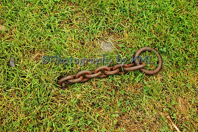 a chain coming out of the grass
