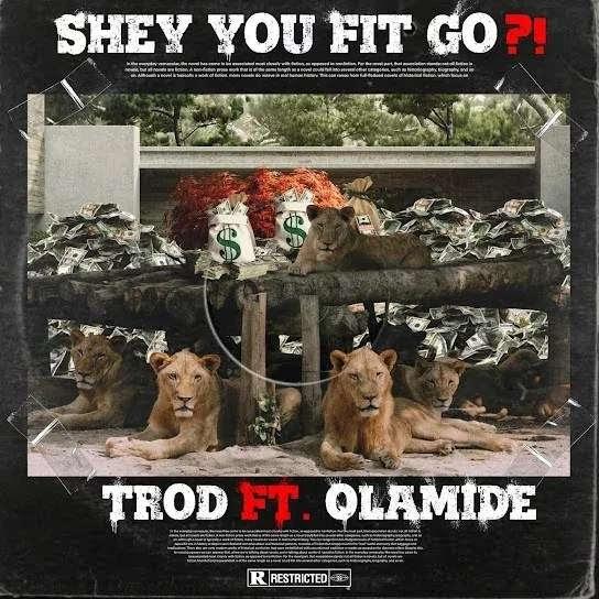 [Mp3] Trod ft. Olamide – Shey You Fit Go?!