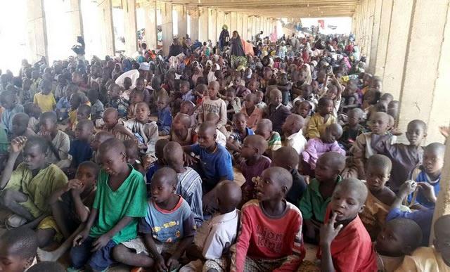 Borno begins renovation of schools