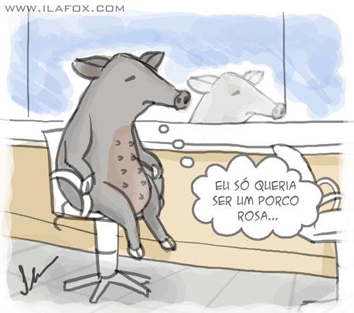 noticia bizarra, javaporco invade salão de cabeleireiro no interior de São Paulo ilustração by ila fox