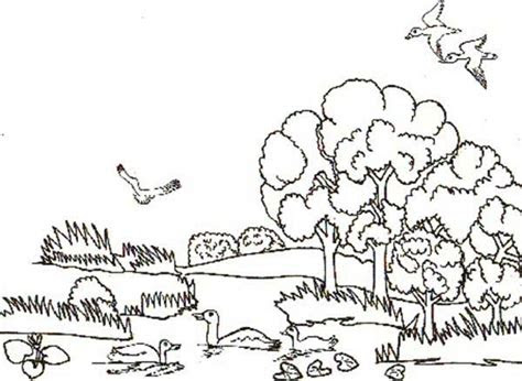 ocean habitat pages coloring pages