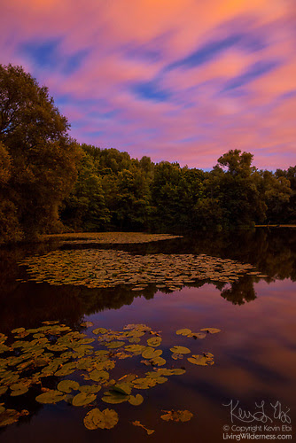 Twilight Clouds Over Pond, Parc des Sources, Bronnenpark, Brussels