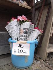 Flower, 100 yen