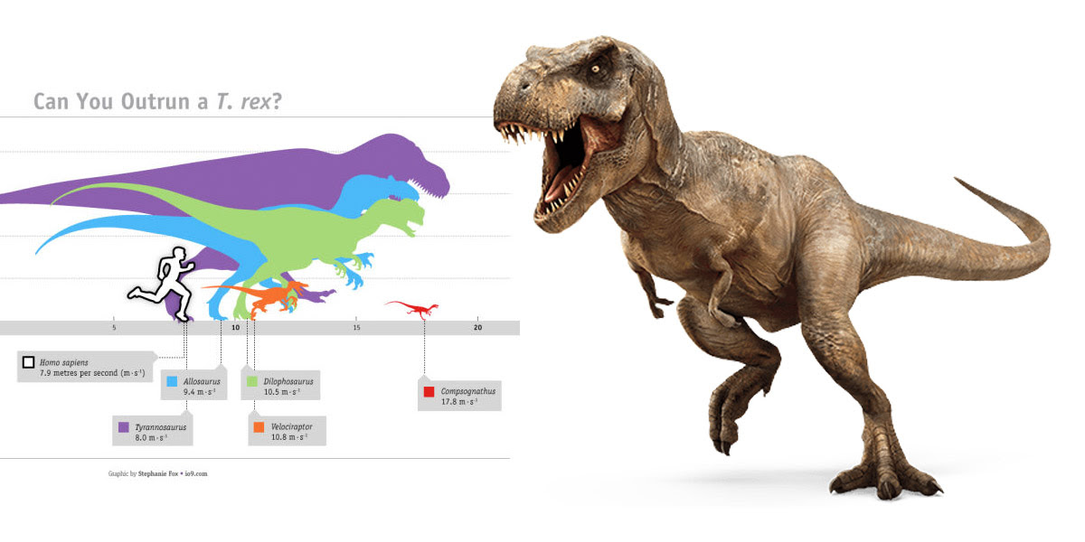 http://sciencevibe.com/2017/07/15/do-you-think-you-can-outrun-a-t-rex-science-vibe-puts-it-to-the-clock-go/