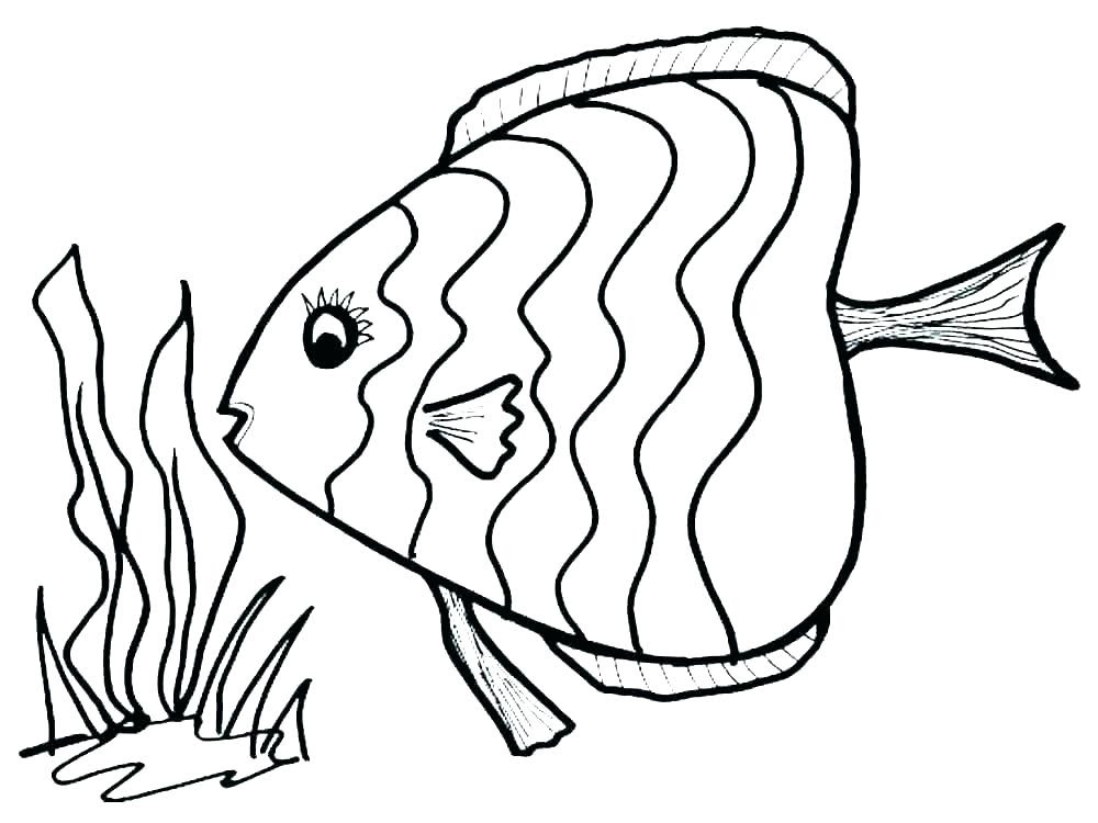 Scary Fish Drawing | Free download on ClipArtMag