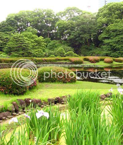 Naturaleza maravillosa jardines japoneses 1 parte for Jardines pequenos orientales