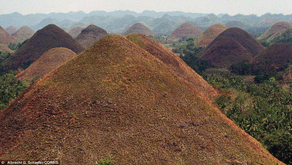 The 'Chocolate Hills' on the island of Bohol in the Philippines get their name because the 1,700 naturally formed mounds are covered with chocolate brown grass in the dry season