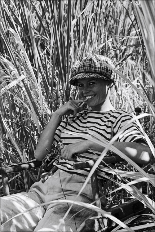 Brigitte Bardot e il rovescio del cielo