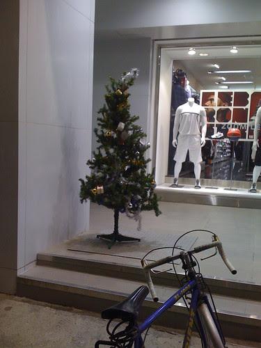 垂死聖誕樹