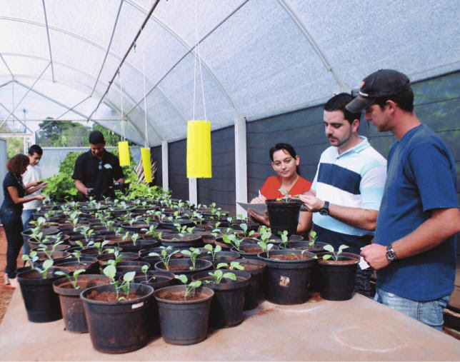 Agricultural Sciences