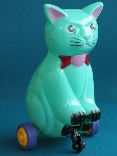 Angry cat on wheels