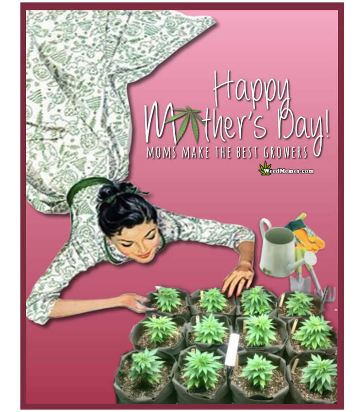 stoner mothers day weed memes